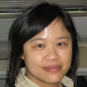 Phooi Yee Lau
